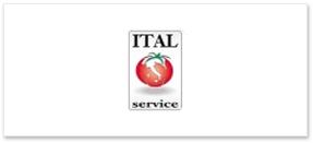 ItalService